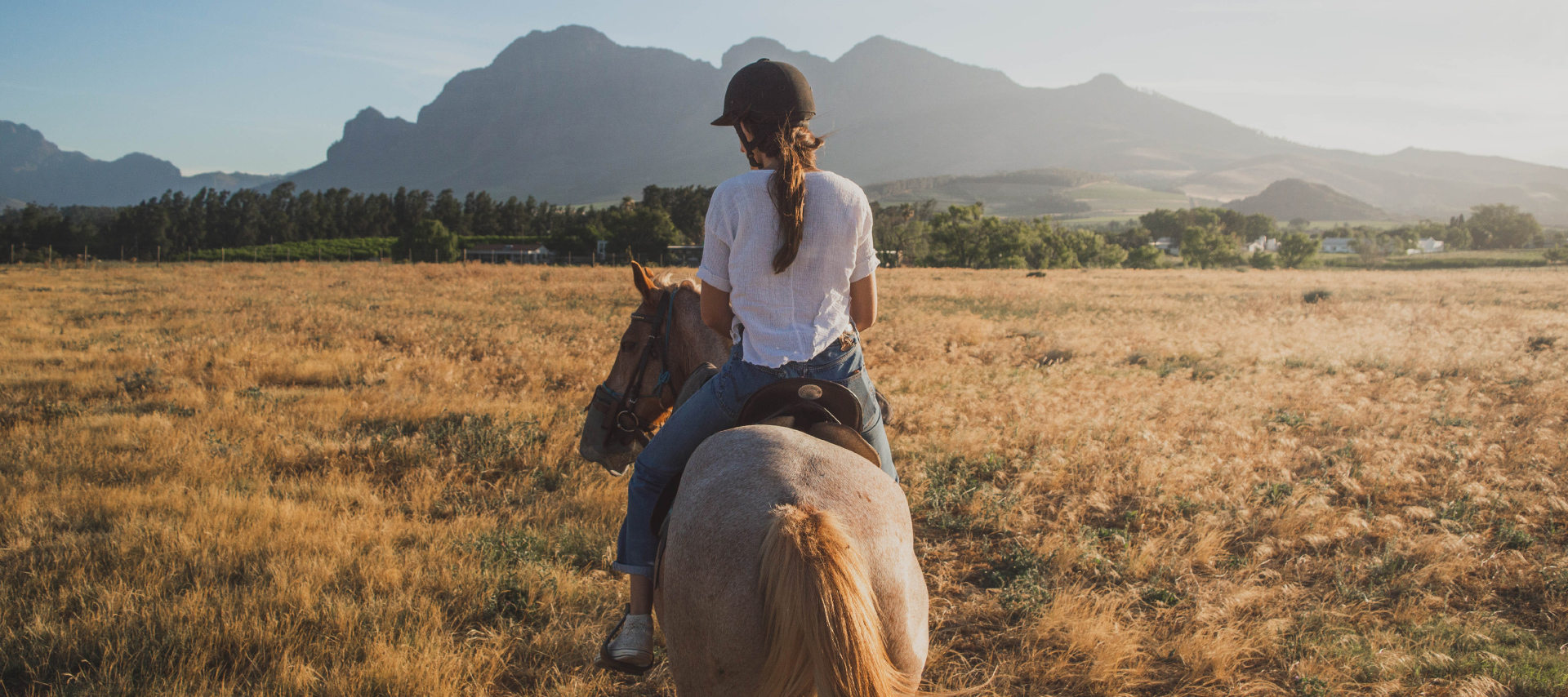 Horse Riding In Clarens